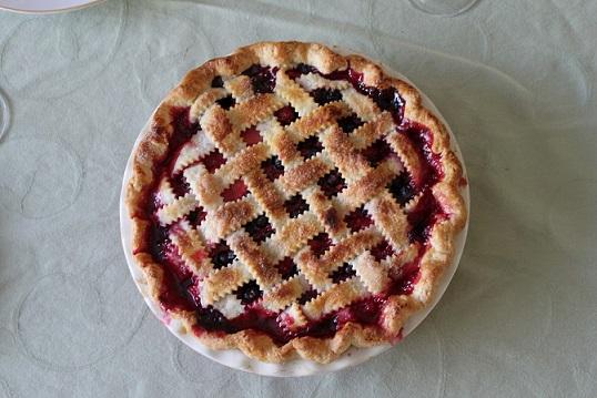 Culinary Uses of Elderberry and Elder flower