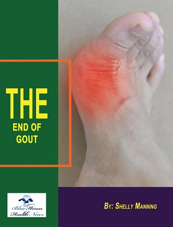 How doesThe End of Gout work