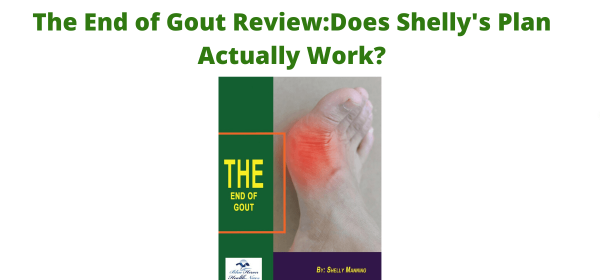 The End of Gout Review: Does Shelly's Plan Actually Work?